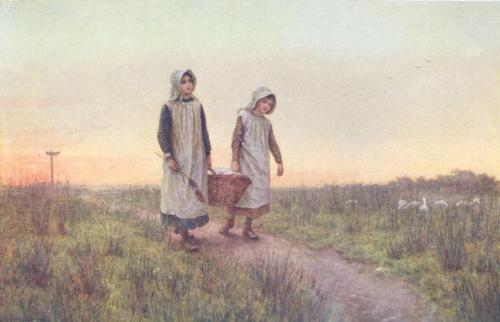 The Clothes-Basket