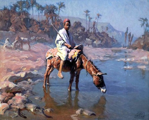 Small Boy On A Donkey Near A Palm Plantation