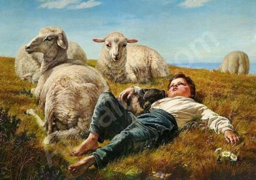 Danish Shepherd With Dog And Sheeps