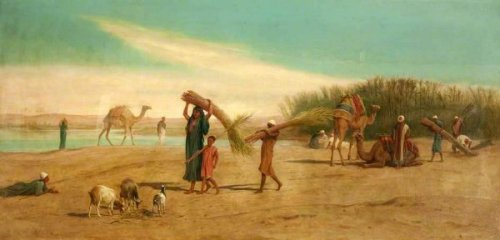 Scene On The Nile