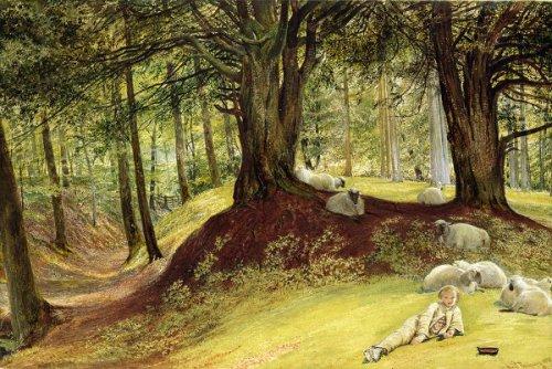 Parkhurst Woods