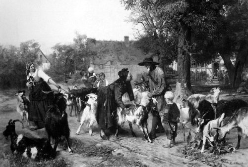 The Goat Traders In The Village