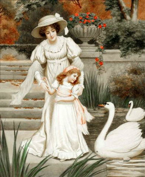 Admiring The Swans