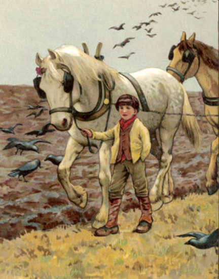 Farm Boy Leads A Plough Horse