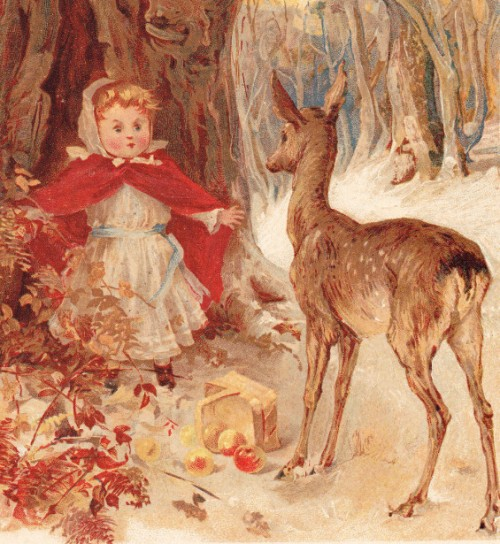Red Riding Hood And Fawn Deer