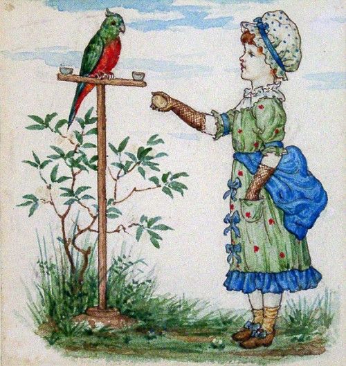 Child With Parrot (Illustration Little Folks magazine)