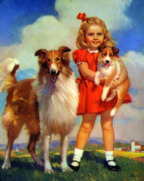 Girl With Collie Dog Puppy