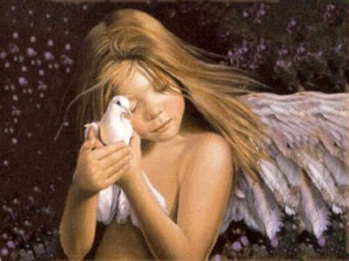 Angel Holding dove